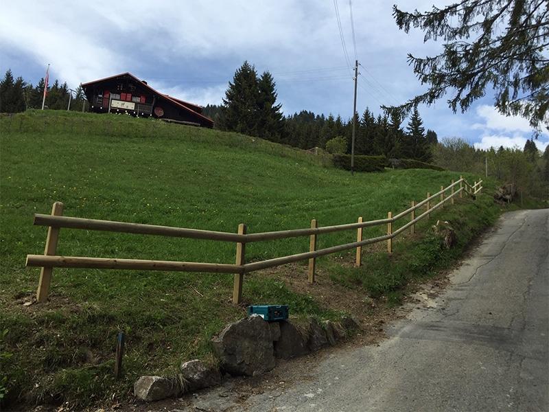 Le Paysagiste Du Canton De Vaud Vert Tige Paysage